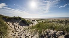 Ainsdale and Birkdale Sandhills Nature Reserve